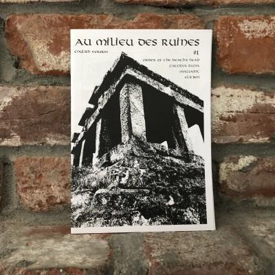 Au Milieu Des Ruines #1