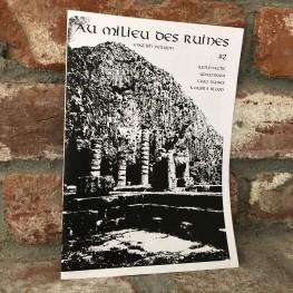 Au Milieu Des Ruines #2