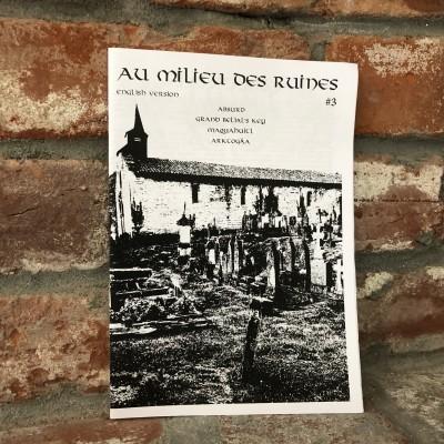 Au Milieu Des Ruines #3