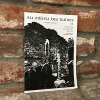 Au Milieu Des Ruines #4