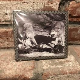 Hadak urA / Sacred Dominions - Split CD